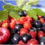 Био продуктите са много здравословни