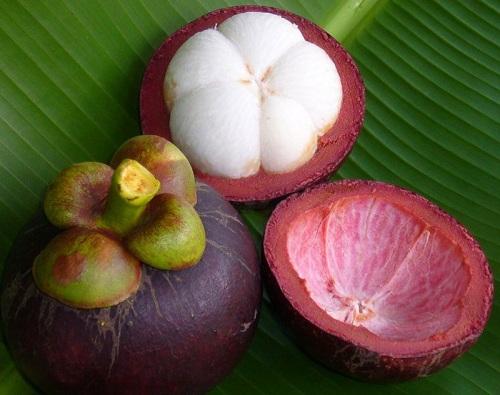 Вижте какви ползи за здравето има от плодът мангостин