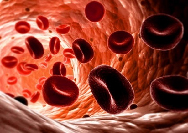 Органите ни могат да бъдат съсипани от желязодефицитна анемия