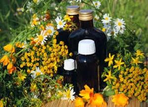 Лековито питие от билки дарява дълголетие и здраве