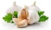 Вкусният чесън е 100 пъти по-ефективен от антибиотиците срещу някои бактерии