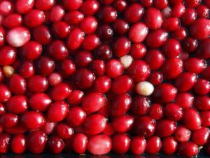 Срещу цистит си помогнете с билки – червена боровинка