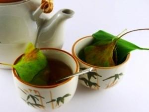чай от гинко билоба