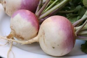 Вижте ползите от превъзходния зеленчук ряпа