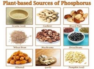 Храни богати на фосфор