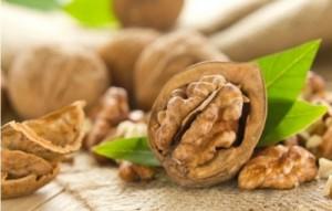 Шепа орехи на ден блокират опасния рак на дебелото черво