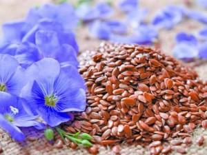 Ленено семе и ленено масло се препоръчват за нормализиране на нивата на високия холестерол в кръвта