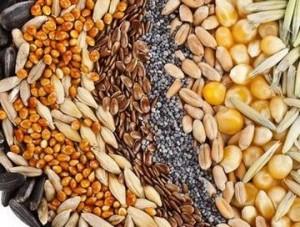 Чудна смес от маслодайни семена и ядки лекува безотказно болести
