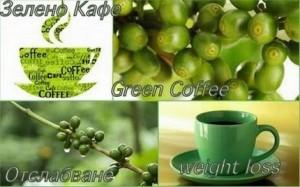 Зелено кафе – богато на полезната хлорогенна киселина